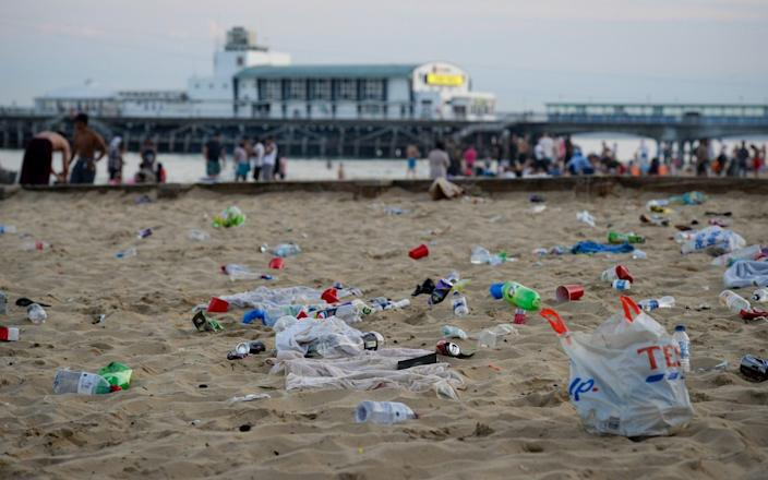 People must 'take your rubbish and litter away and bin it', the former minister said - Getty