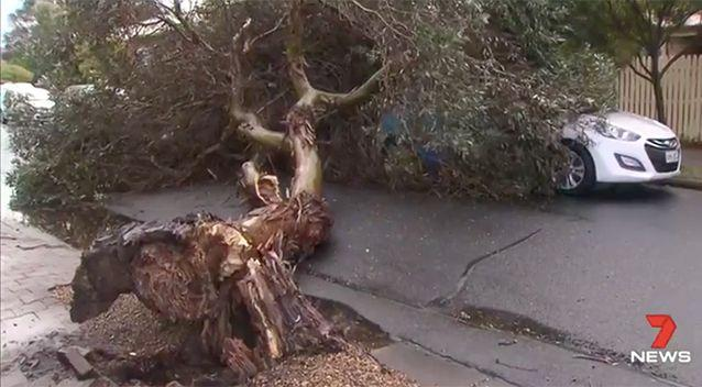 Wild weather also caused damage across parts of South Australia. Source: 7 News