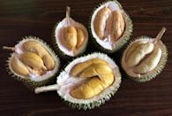 These five durians, the Bamboo (Left), D13 (Centre Left), Ang Hae (Centre Right), Jin Feng (Right) and Mao Shan Wang (Front), are among the most popular durians in Singapore. The Bamboo has a light flavour while the Mao Shan Wang has a strong taste (Mao Shan Wang). (Photo by: Resorts World Sentosa)