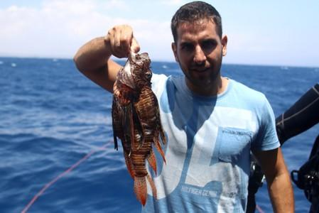 Periklis Kleitou, a marine scientist, holds a lionfish after a dive at the Zenobia, a cargo ship wreck off Larnaca