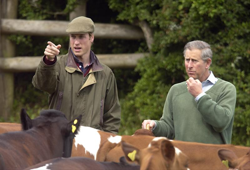 The Prince Of Wales & Prince William At Duchy Home Farm In Gloucestershire. (Photo by Julian Parker/UK Press via Getty Images)