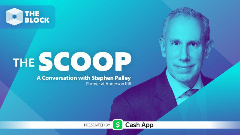 A Conversation with Stephen Palley, Partner at Anderson Kill