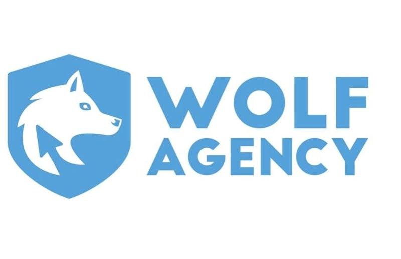 Wolf Agency: l'agenzia digitale per la migliore strategia di marketing e SEO