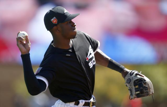 "<a class=""link rapid-noclick-resp"" href=""/mlb/players/9897/"" data-ylk=""slk:Tim Anderson"">Tim Anderson</a> could be worth a dart throw in 2018 (AP/Ross D. Franklin)"