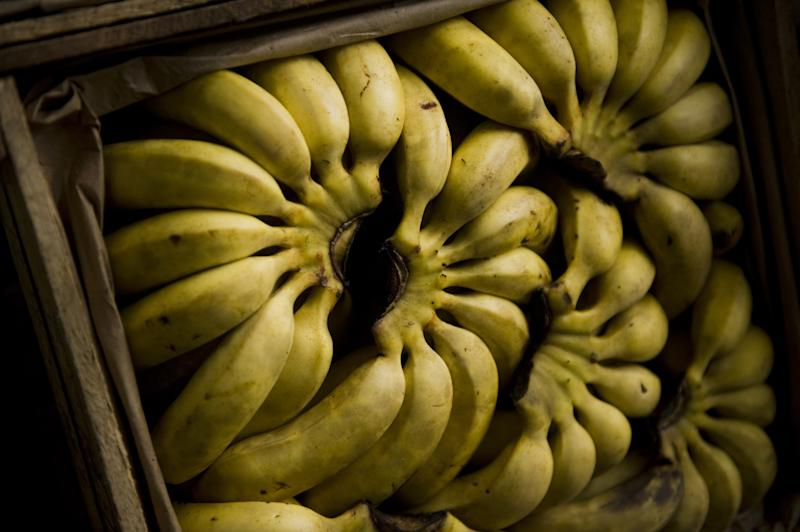 A US appeals court on Thursday threw out a civil lawsuit by thousands of Colombians against Chiquita Brands International, whose funding of paramilitary groups allegedly cost the lives of their loved ones
