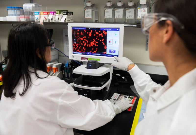 Dr. Sonia Macieiewski (R) and Dr. Nita Patel, Director of Antibody discovery and Vaccine development, look at a sample of a respiratory virus at Novavax labs in Gaithersburg, Maryland on March 20, 2020, one of the labs developing a vaccine for the coronavirus, COVID-19. (Photo by ANDREW CABALLERO-REYNOLDS / AFP) / The erroneous mention[s] appearing in the metadata of this photo by ANDREW CABALLERO-REYNOLDS has been modified in AFP systems in the following manner: [Gaithersburg] instead of [Rockville]. Please immediately remove the erroneous mention[s] from all your online services and delete it (them) from your servers. If you have been authorized by AFP to distribute it (them) to third parties, please ensure that the same actions are carried out by them. Failure to promptly comply with these instructions will entail liability on your part for any continued or post notification usage. Therefore we thank you very much for all your attention and prompt action. We are sorry for the inconvenience this notification may cause and remain at your disposal for any further information you may require. (Photo by ANDREW CABALLERO-REYNOLDS/AFP via Getty Images)