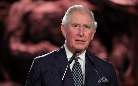 Prince Charles delivers a speech during the Fifth World Holocaust Forum - Credit: AFP