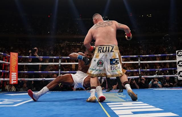Ruiz stopped Joshua in the seventh round (Photo credit should read TIMOTHY A. CLARY/AFP via Getty Images)