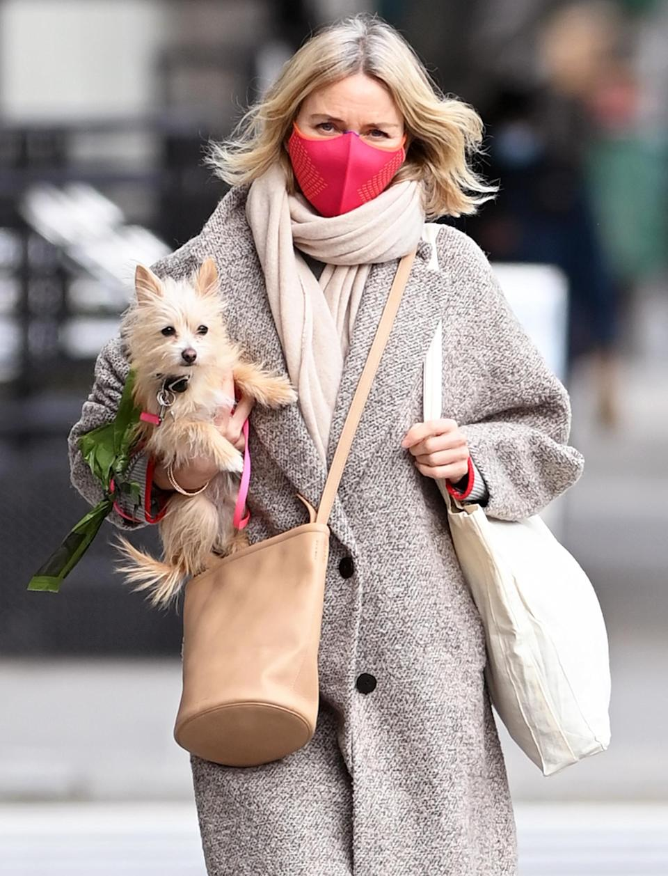 <p>Naomi Watts and her pup make an adorable pair in New York City on Friday.</p>