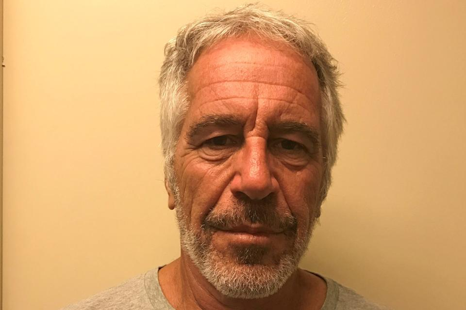 Jeffrey Epstein  (New York State Division of Criminal Justice Services/Handout via REUTERS)