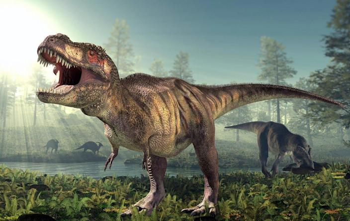 """<span class=""""caption"""">_Tyrannosaurus rex_ spanned all of ancient North America, and about 20,000 lived at once.</span> <span class=""""attribution""""><a class=""""link rapid-noclick-resp"""" href=""""https://commons.wikimedia.org/wiki/File:Tyrannosaurus-rex-Dinosaur.jpg#/media/File:Tyrannosaurus-rex-Dinosaur.jpg"""" rel=""""nofollow noopener"""" target=""""_blank"""" data-ylk=""""slk:1Ado123/Wikimedia Commons"""">1Ado123/Wikimedia Commons</a>, <a class=""""link rapid-noclick-resp"""" href=""""http://creativecommons.org/licenses/by-sa/4.0/"""" rel=""""nofollow noopener"""" target=""""_blank"""" data-ylk=""""slk:CC BY-SA"""">CC BY-SA</a></span>"""