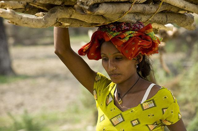 Carrying wood, Bardia district, Nepal. © Simon de Trey-White/WWF-UK
