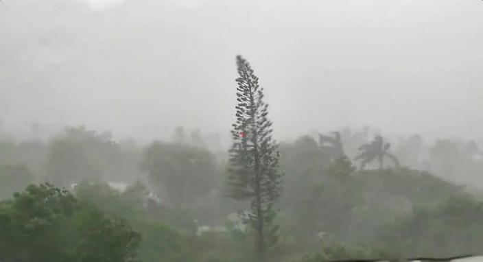 Trees sway amid rainfall and wind as Tropical Storm Elsa strengthened into a Category 1 hurricane as it makes its way through Key West, Florida