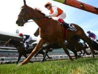 The 2019 Melbourne Cup winner is Australian racehorse Vow and Declare