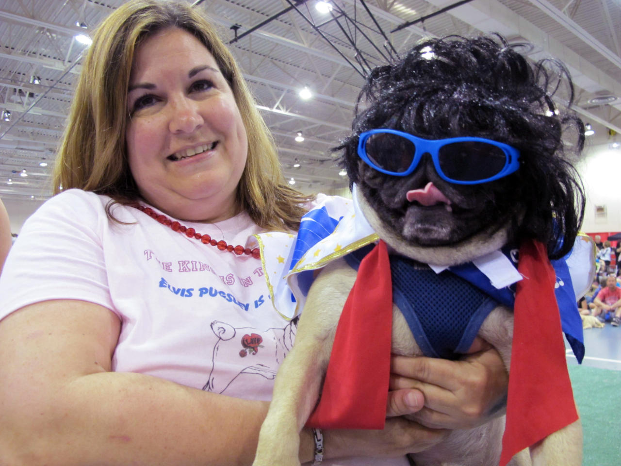 In this May 19, 2013, photo Diane Schafroth holds Elvis Pugsley at Milwaukee Pug Fest in Franklin, Wis.  The annual event, that helps pay for medical and dental bills for rescued pugs, attracted more than 1,700 pugs and other smushy-faced dogs along with 2,900 humans from the U.S. and Canada. (AP Photo/Carrie Antlfinger)