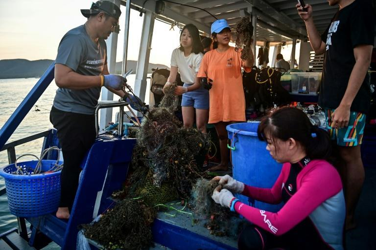 The initiative comes in the wake of a growing local outcry over the lethal effects of plastic on marine life