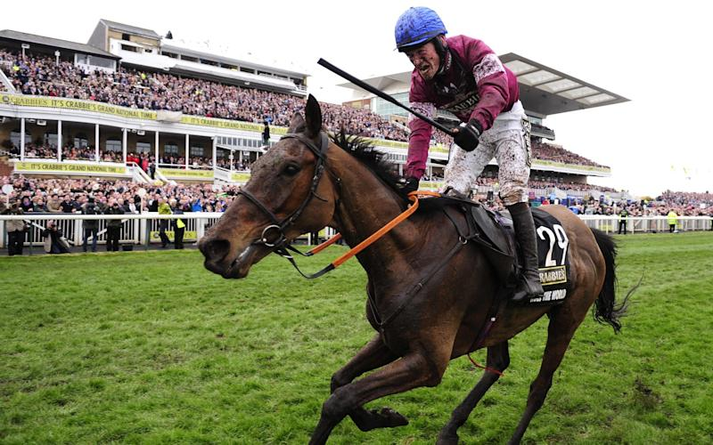Rule The World was last year's winner at Aintree - Rex Features