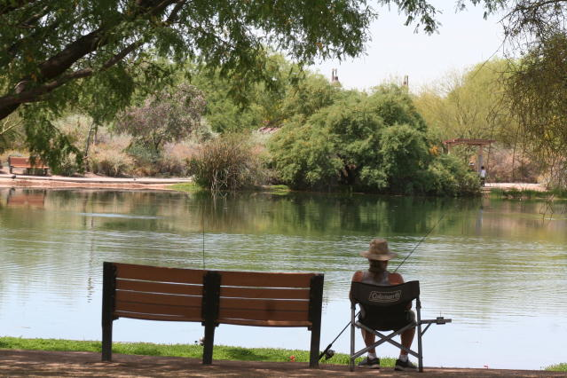 In this April 30, 2020 photo, a fisherman watches his line from the shade at Veterans Oasis Park in Chandler, Ariz. People who have been locked down during the coronavirus have been turning to fishing at community lakes as a chance to go outdoors and still following social-distancing guidelines. (AP Photo/John Marshall)
