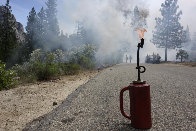 In this June 11, 2019 photo, a drip torch burns as firefighters in the distance monitor a fire burning in Kings Canyon National Park, Calif. The prescribed burn, a low-intensity, closely managed fire, was intended to clear out undergrowth and protect the heart of Kings Canyon National Park from a future threatening wildfire. The tactic is considered one of the best ways to prevent the kind of catastrophic destruction that has become common, but its use falls woefully short of goals in the West. (AP Photo/Brian Melley)