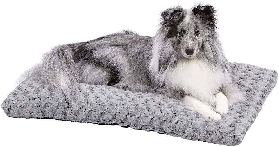MidWest Homes for Pets - Plush Dog Bed