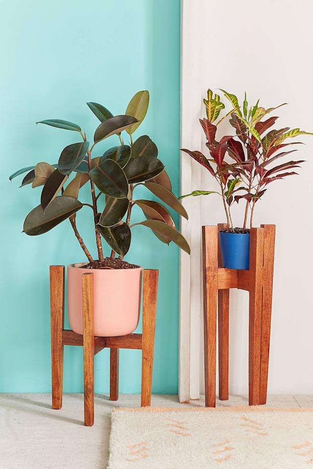 "<p>The <a href=""https://www.popsugar.com/buy/Knock-Down-Plant-Stand-529095?p_name=Knock%20Down%20Plant%20Stand&retailer=urbanoutfitters.com&pid=529095&price=59&evar1=casa%3Auk&evar9=45914034&evar98=https%3A%2F%2Fwww.popsugar.com%2Fhome%2Fphoto-gallery%2F45914034%2Fimage%2F46995362%2FKnock-Down-Plant-Stand&list1=shopping%2Cgifts%2Cgift%20guide%2Chouse%20plants%2Cplants%2Chome%20shopping&prop13=api&pdata=1"" rel=""nofollow"" data-shoppable-link=""1"" target=""_blank"" class=""ga-track"" data-ga-category=""Related"" data-ga-label=""https://www.urbanoutfitters.com/shop/knock-down-plant-stands?category=SEARCHRESULTS&amp;color=020"" data-ga-action=""In-Line Links"">Knock Down Plant Stand</a> ($59-$69) will add midcentury style into any room it's in. </p>"