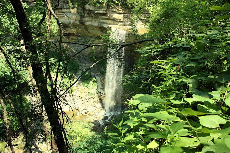"<p>It's said that the waterfalls throughout <a href=""https://www.tripadvisor.com/Attraction_Review-g37289-d103667-Reviews-Clifty_Falls_State_Park-Madison_Indiana.html"" rel=""nofollow noopener"" target=""_blank"" data-ylk=""slk:Clifty Falls State Park"" class=""link rapid-noclick-resp"">Clifty Falls State Park</a> reflect the changing seasons: They fluctuate from misty trickles in dry periods to surging, grandiose wonders in the late winter and spring.</p><p><br><a class=""link rapid-noclick-resp"" href=""https://go.redirectingat.com?id=74968X1596630&url=https%3A%2F%2Fwww.tripadvisor.com%2FAttraction_Review-g37289-d103667-Reviews-Clifty_Falls_State_Park-Madison_Indiana.html&sref=https%3A%2F%2Fwww.redbookmag.com%2Flife%2Fg34357299%2Fbest-hikes-in-the-us%2F"" rel=""nofollow noopener"" target=""_blank"" data-ylk=""slk:PLAN YOUR HIKE"">PLAN YOUR HIKE</a></p>"