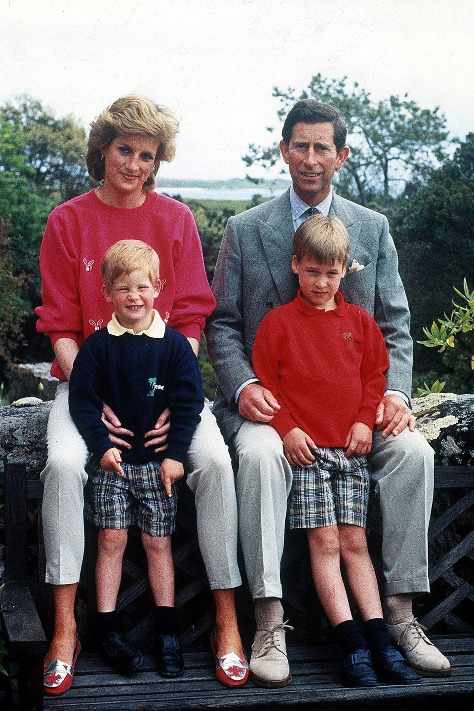 <p>The royal family poses together for a photo. </p>