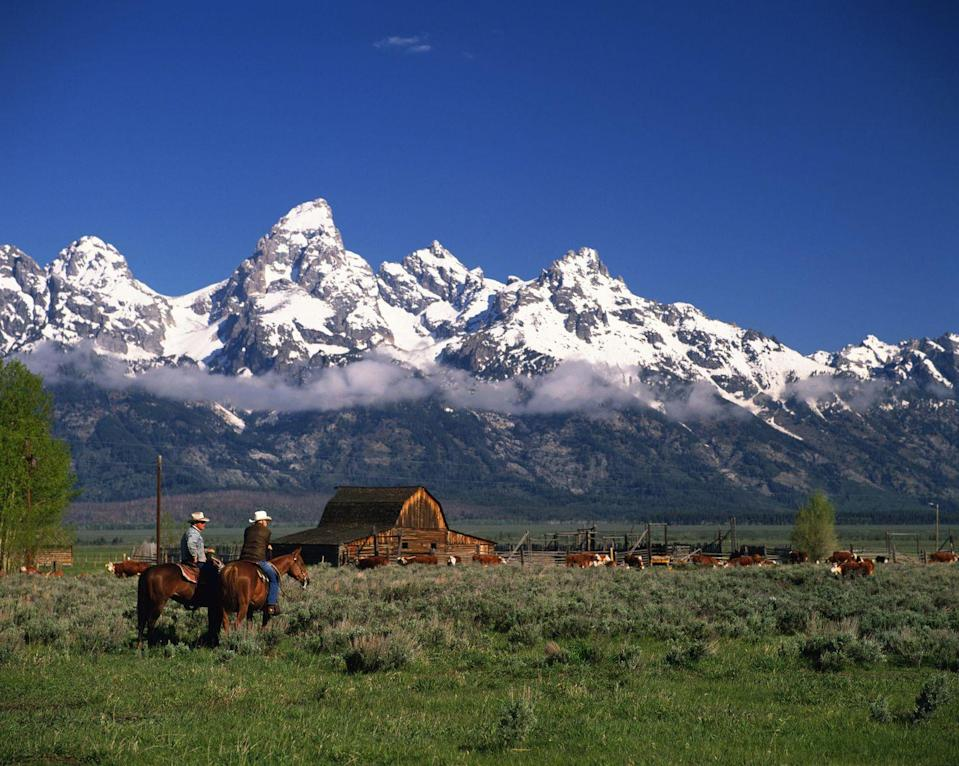 <p>Consider it the ultimate two for one: the opportunity to stay at a dude ranch <em>and</em> stay inside Wyoming's Grand Teton National Park. In fact, Triangle X, which has been operated by the Turner family for five generations, is the only remaining guest ranch inside the National Park system. Today, guests have the opportunity to stay at one of 20 cabins set in the shadow of the Grand Tetons in Jackson Hole, exploring the park by horseback during the summer and by skis in the winter.</p>