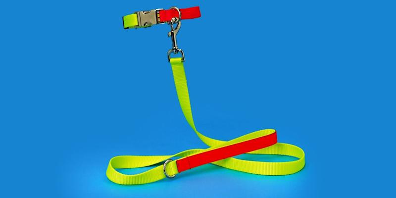 If your pup is as sophisticated as you think it is, they're probably aware that neon is trending in high fashion. Help them be part of the in-crowd with a neon leash and collar that will electrify your entryway or mudroom, too. SHOP NOW: Nylon leash and collar by Ware of the Dog, from $88, wareofthedog.com