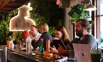 Bongs, or water-pipes, are seen among other assorted items on the bar at Lowell Farms: A Cannabis Cafe in West Hollywood, California