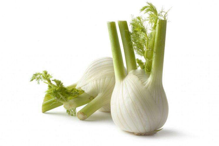 A new study of fennel backs up its long-touted medicinal properties.