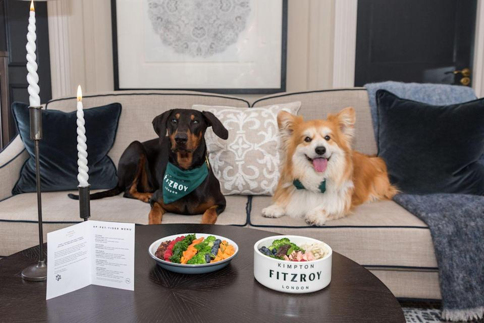"""<p>It's not just dogs that get a warm welcome at the Kimpton Fitzroy near London's Russell Square: rabbits are treated like royalty, too. The hotel has partnered with Marleybones for its new pet-approved room-service menu, and cats, hamsters and hedgehogs are invited, too. In terms of animal size, there's no weight limit: if they fit through the door, they're allowed in, with a special room set-up and tuckbox (plus one for their envious owners) to greet them. And if you were wondering what room service for pets looks like – the menu includes the Bloomsbury Bark (beef with sweet potato, kale and rosemary) and the Superbunny Salad (bok choi, broccoli, fennel and basil).</p><p>For more information, visit <a href=""""https://www.kimptonfitzroylondon.com/"""" rel=""""nofollow noopener"""" target=""""_blank"""" data-ylk=""""slk:kimptonfitzroylondon.com"""" class=""""link rapid-noclick-resp"""">kimptonfitzroylondon.com</a>.</p>"""