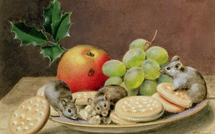 Not a creature stirring?: A Christmas Feast for Mice by 19th-century artist John Sherrin - www.bridgemanimages.com