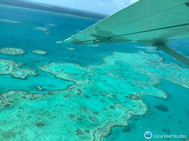 An aerial view of bleached corals at the Great Barrier Reef.