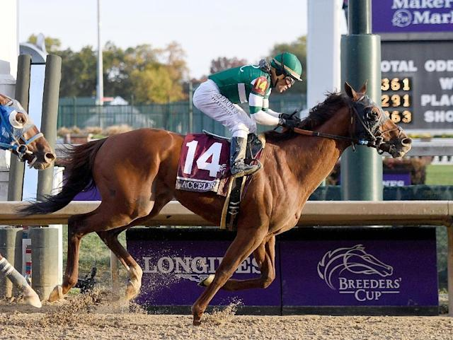 Accelerate, ridden by Joel Rosario, wins the Breeders' Cup Classic on Saturday at Churchill Downs (AFP Photo/Bobby Ellis)