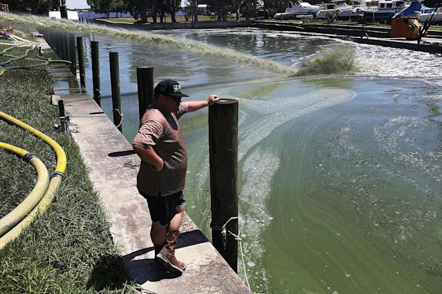 <p>Dennis McGuire of Ecosphere Technologies, looks on as the company's water treatment system is used in an attempt to kill algae at the Outboards Only marina along the St. Lucie River in Jensen Beach, Fla., July 11, 2016. (Photo: Joe Raedle/Getty Images) </p>