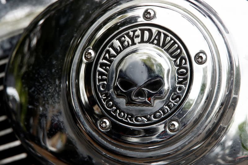 "A Harley Davidson logo with a skull is seen on a motorcycle during a funeral service for a ""Hells Angels"" member in Bonn"