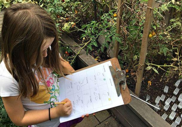 PHOTO: A student draws pictures of vegetables in the Brooklyn New School garden in Brooklyn, New York. (Courtesy Jennifer Donlin)