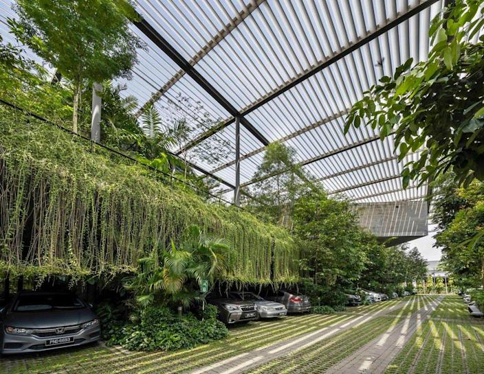 Verdant parking area in the new