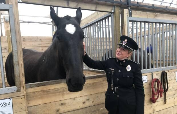 Const.Kelsey Muise helped bring the Heroes Equine Learning Program to Newfoundland and Labrador.  (Jeremy Eaton/CBC - image credit)