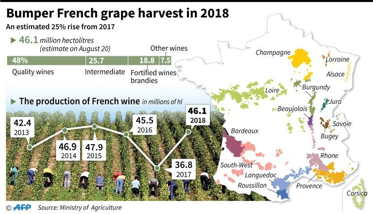 Map of the wine regions of France and the progression of grape production since 2013