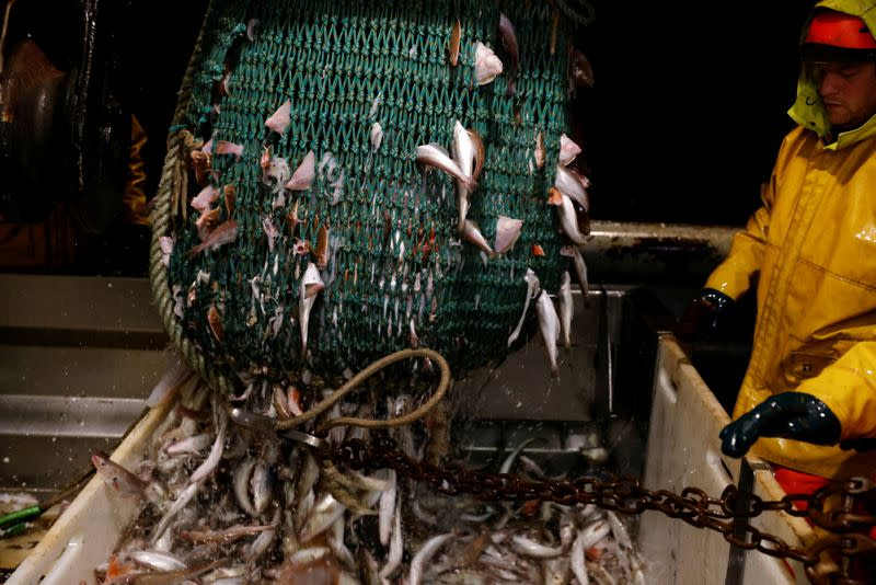On board the French fishing vessel Nicolas Jeremy in the North Sea