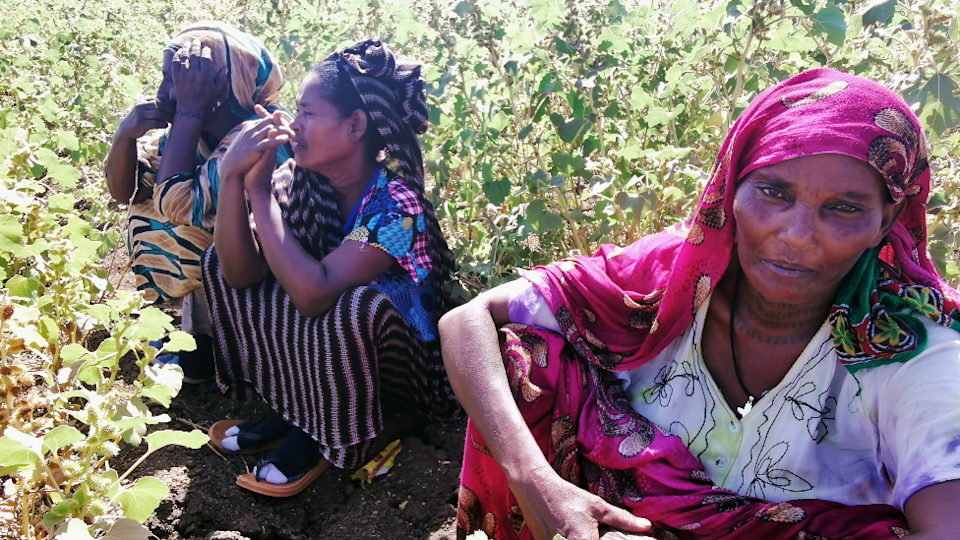 Ethiopian women, who fled the ongoing fighting in Tigray region, at the al-Fashqa refugee camp in Sudan's eastern Kassala state -13 November 2020