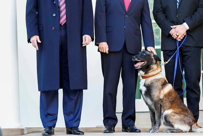 Vice President Mike Pence pets Conan, the U.S. military dog that was part of and was injured in the U.S. raid in Syria that killed ISIS leader Abu Bakr al-Baghdadi last month. The dog was honored at the White House Monday (President Donald Trump is on the left). (Photo: Tom Brenner / Reuters)