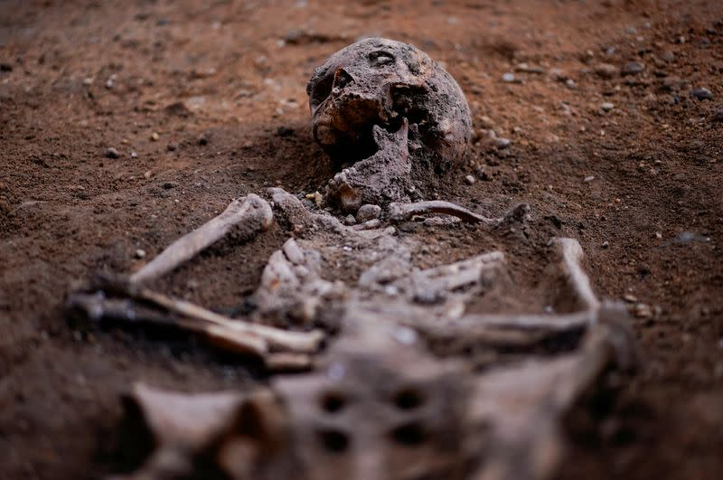 Spanish dig unearths human remains in hunt for Irish rebel lord