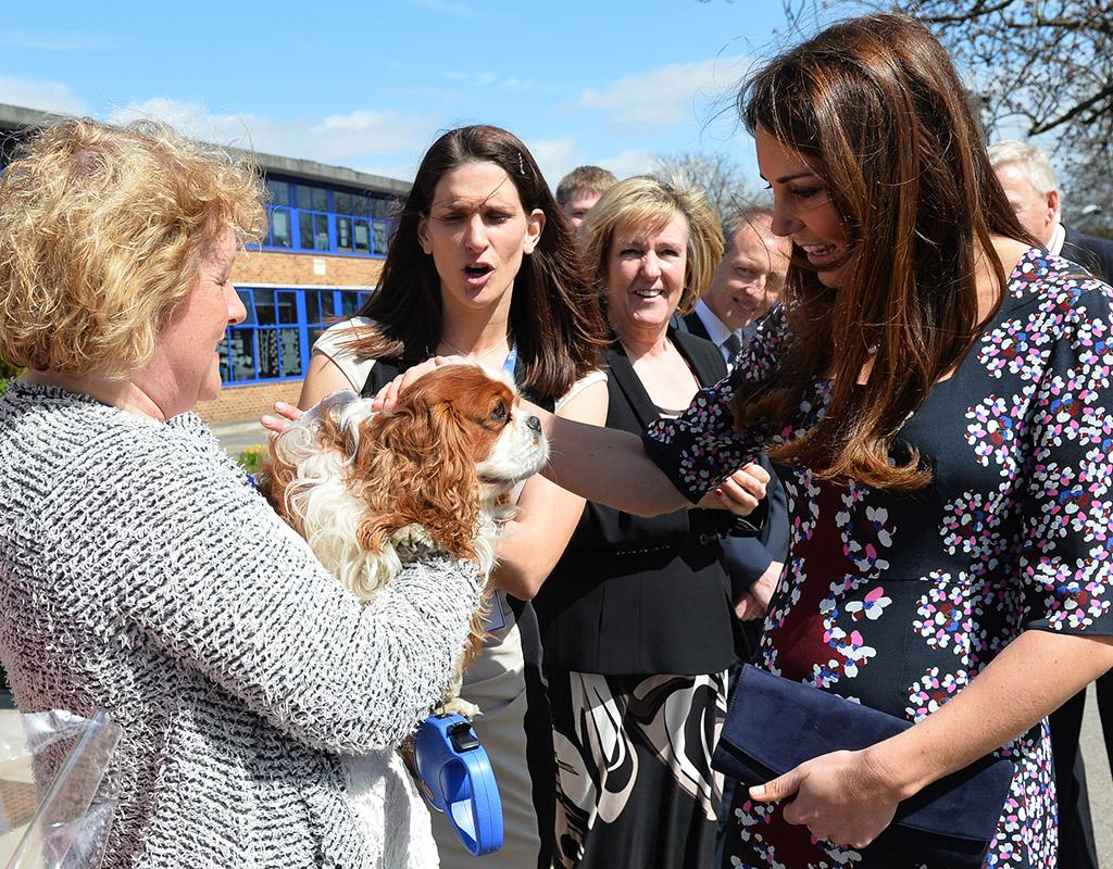 Catherine, Duchess of Cambridge, had the media abuzz this week when she gave the world a peek at her (albeit still tiny) baby bump when she visited The Willows Primary School in Manchester, England, and was greeted by the school's resident pup. (4/23/2013)