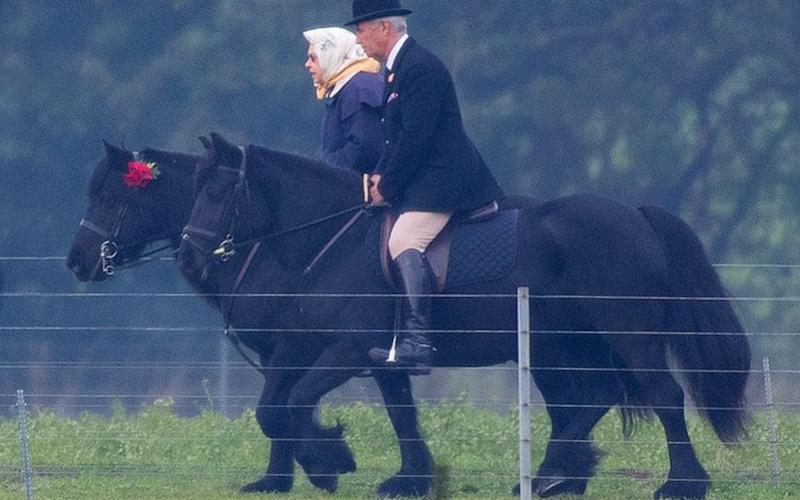 The Queen out riding, with a rosette of red poppies on her pony at Windsor Castle - Kelvin Bruce