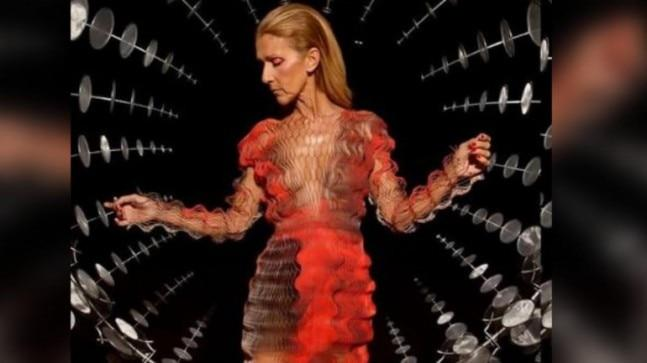 "Celine Dion's pictures from the Paris Fashion Week didn't impress the internet at all as fans are worried about her ""seriously underweight"" appearance."