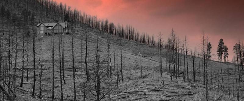 The aftermath of a wildfire in Colorado.