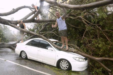 Tourists climb on a tree that was uprooted due to winds from Tropical Cyclone Marcus and landed on a car in the Northen Territory capital city of Darwin in Australia, March 17, 2018.    AAP/Glenn Campbell/via REUTERS